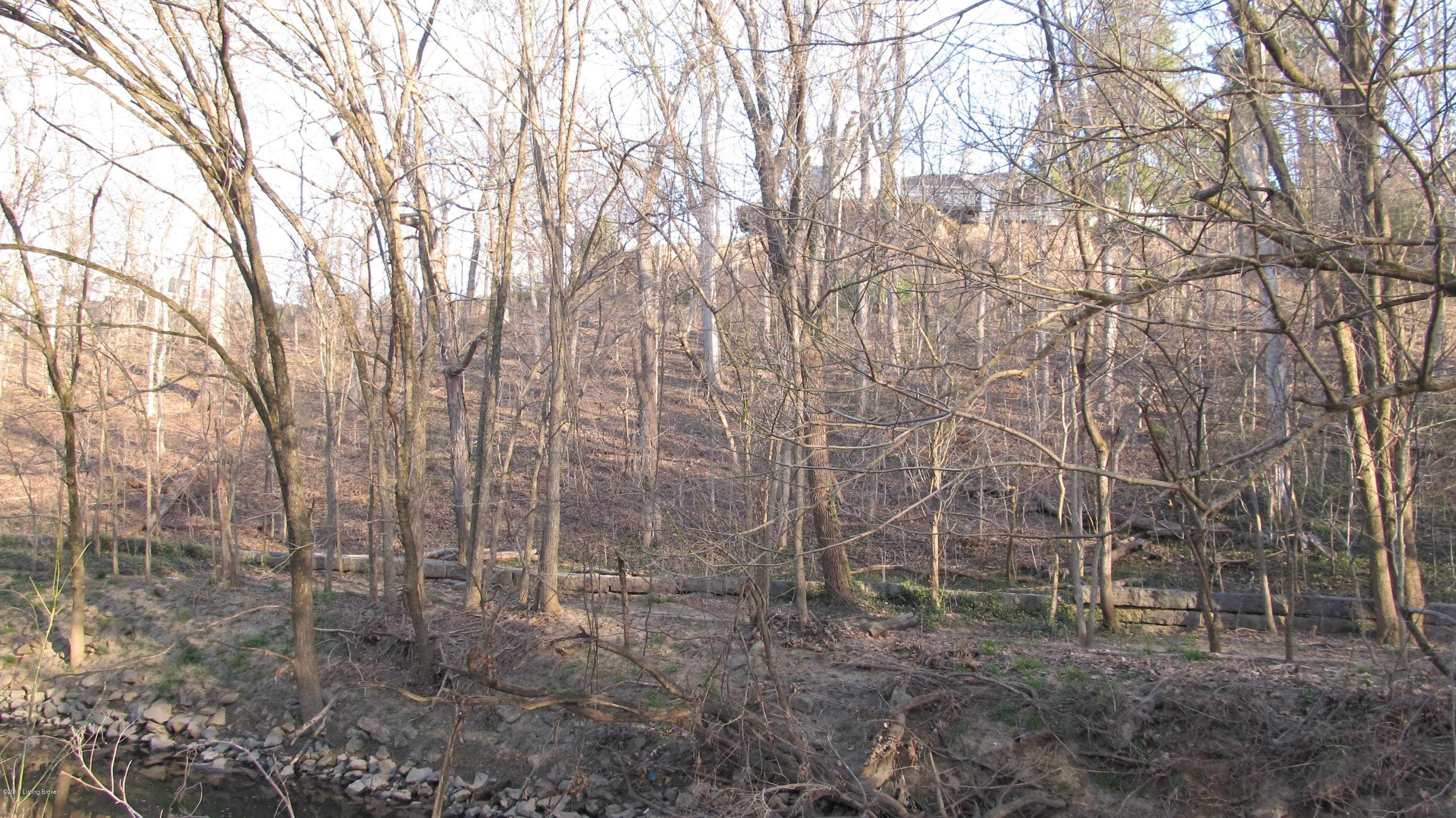 19. Land for Sale at 1044 Alta Vista Louisville, Kentucky 40205 United States