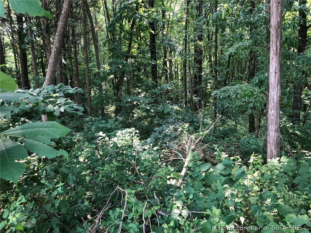 Land for Sale at Squire Boone Road Mauckport, Indiana 47142 United States