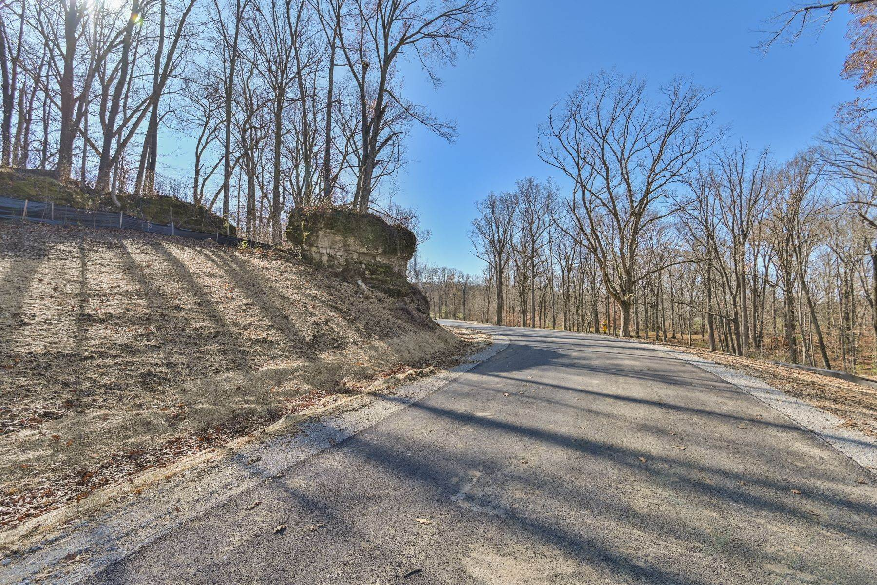 16. Land for Sale at 17 Fincastle Farms Trace Prospect, Kentucky 40059 United States