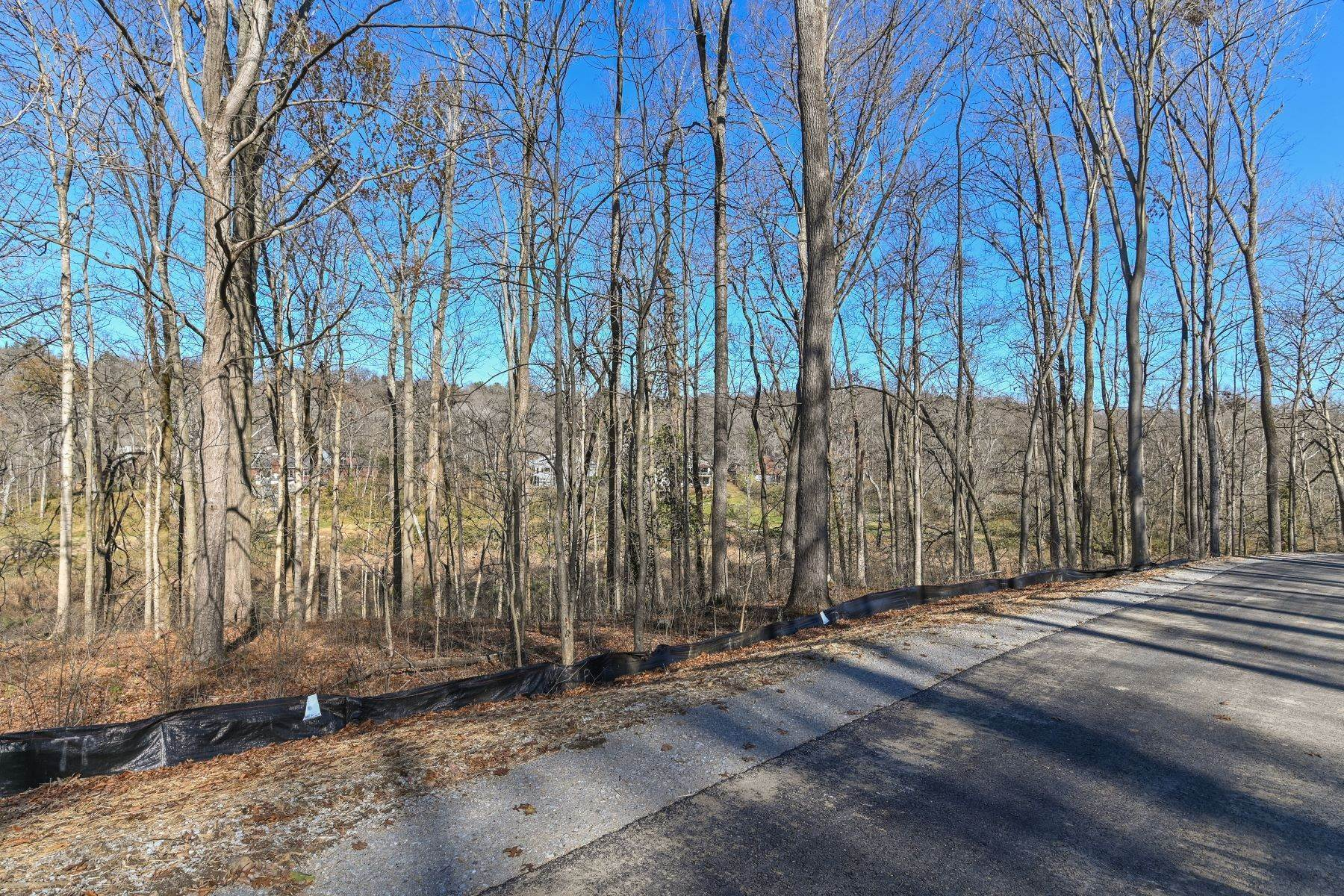 14. Land for Sale at 17 Fincastle Farms Trace Prospect, Kentucky 40059 United States