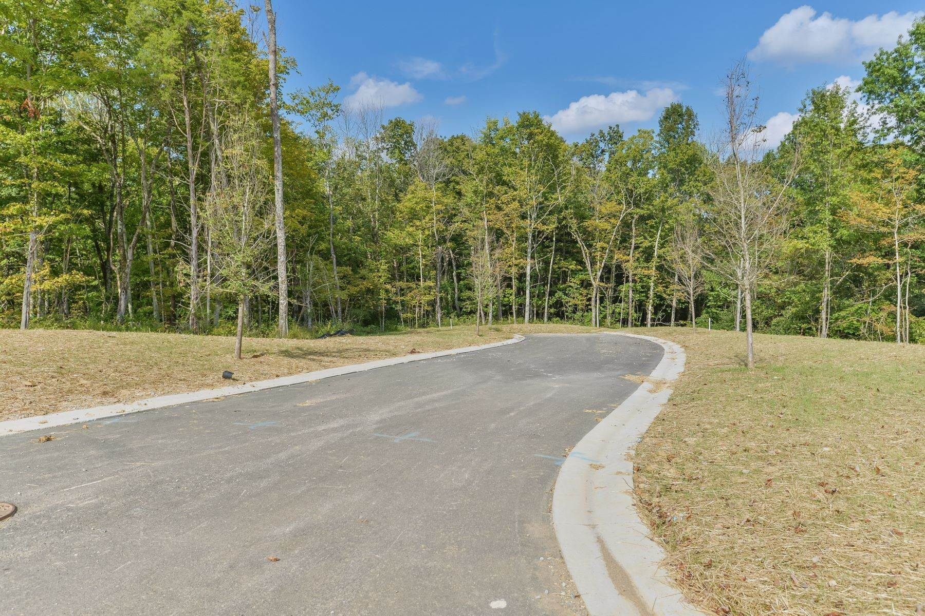 Land for Sale at Lot 121 - Catalpa Farms 121 Catalpa Farms Drive Fisherville, Kentucky 40023 United States